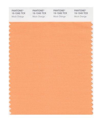 PANTONE SMART 15-1245X Color Swatch Card, Mock Orange by Pantone