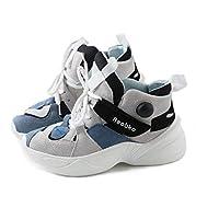 Vansney 2018 Otoño/Invierno Zapatos Deportivos Plataforma de Malla de Las Mujeres Zapatos Transpirables Zapatos Casuales Clunky Sneaker