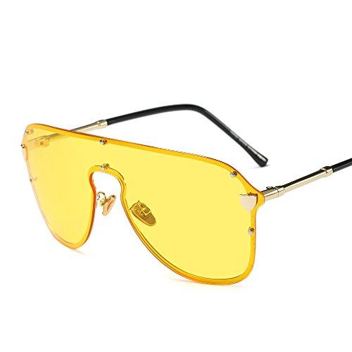 HQADIER Klassische Mode Neutral Sonnenbrille Aviator Sonnenbrille Vintage Brille UV400 Schutz Autofahrer Ski Sportbrillen,C5