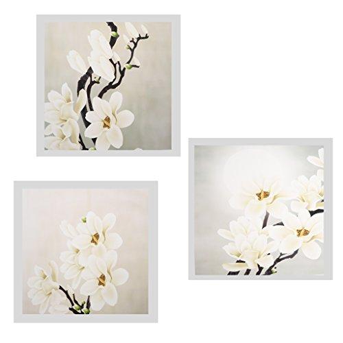 Homyl 3 Stück Leinwand Bilder Wandbilder Drucke Gemälde Weiße Orchidee