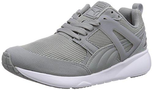 Puma Aril Unisex-Erwachsene Sneakers Grau (limestone gray-dark shadow 01)