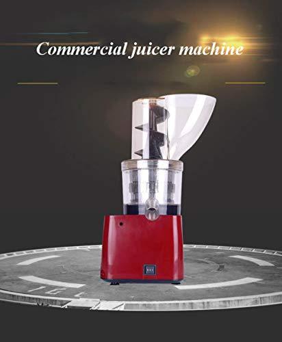 YGGY Gewerbliche Industrie Entsafter Maschine 123mm Kaliber Orangensaftpresse ohne Handschub Schneckenextruder Apfelsaftmaschine, 220V