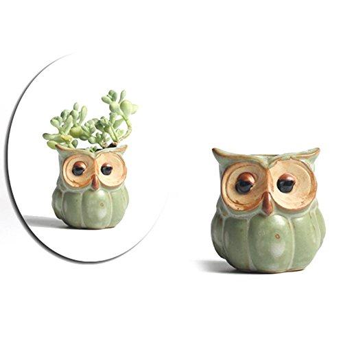 """Cheerfulus Keramik-Blumentöpfe \""""Eule\""""für Kinder Zum Dekorieren im Frühjahr,fleischiger Pflanze Topf Pflanzgefäßen Dekoration(zufällig versenden)"""