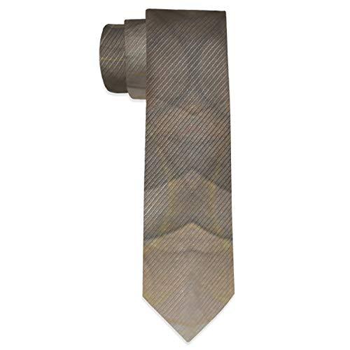 Preisvergleich Produktbild Sula-Lit Men's Necktie Bronze Flame Classic Neck Ties for Men Gift