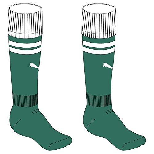 PUMA Stutzen Team Socks grün / weiß // KING