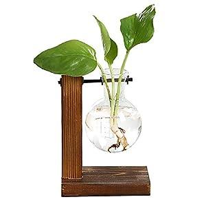 Magiin Deko Holz Halter mit Hydroponik Hängevase Glasvase Blumenvase Tischvase Dekovase Holz Halter (2 Stück A)