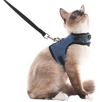 Harnais et plomb pour chat Escape Proof - Harnais ajustable en maille souple pour chatons de chiot Lapins, L