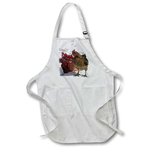 Fall Chicken - Full Length Apron With Pockets 22w X