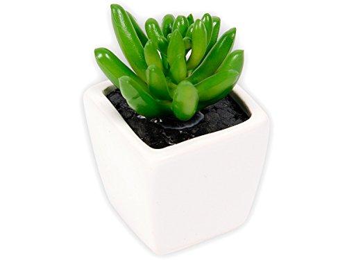 plante-grasse-artificielle-succulente-cactee-en-mini-pot-ceramique-101342-decoration-de-couleur-natu