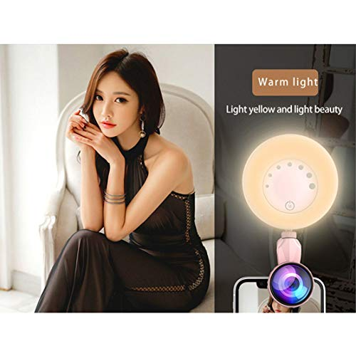 WQ32-Beauty-Touch-Sensor-APP-Control-Selfie-Clip-Flash-Light-con-HD-4K-grandangolare-20X-Macro-Lens-per-Live-Stream-Rosa