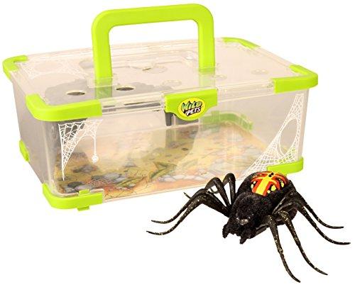 Wild Pets Spinne / Spider