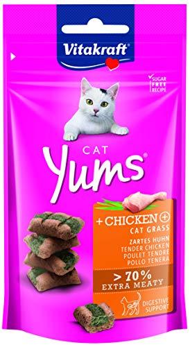 Vitakraft Cat Yums Huhn & Katzengras, 1er Pack (1 x 40 g) -