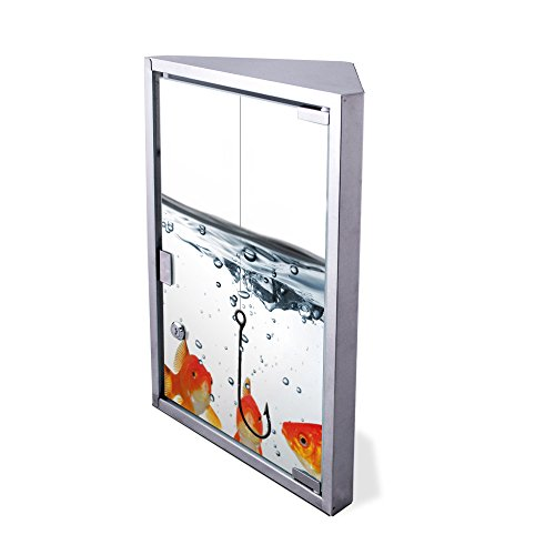 Edelstahl Medizinschrank Eckschrank abschließbar 30x17,5x45cm Badschrank Hausapotheke Arzneischrank Bad Fische