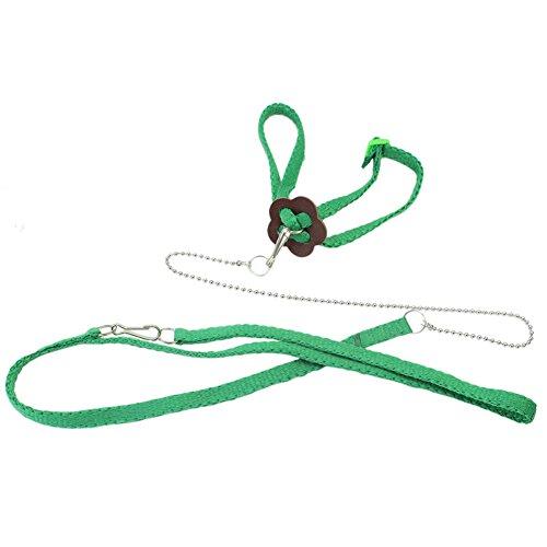 Preisvergleich Produktbild 1x Hundeleine Führleine 40cm Gurt Halsband Verstellbar (farbe zufällig)