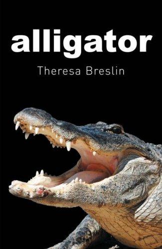 Alligator -