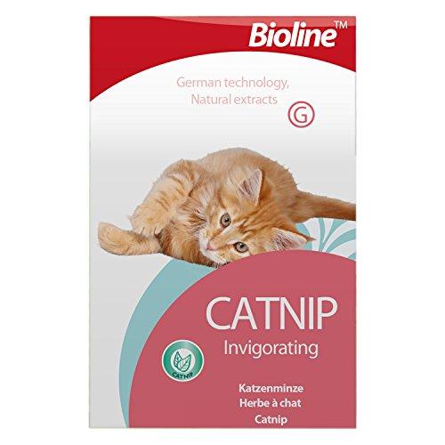 Premium Katzenminze Blätter–genußmittel für Katzen