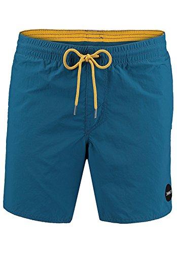 O'Neill Herren Vert Shorts Boardshorts Lyons Blue
