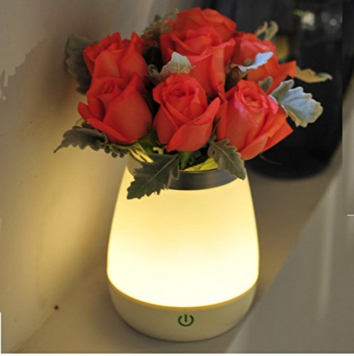 DLPJ 3in 1dimmbar LED-Schreibtisch-Lampe aufladbar Anti-Fall und wasserdicht 5V LED Decor Lampe 1,5W Soft weiß Nachtlicht Flower Vase Fisch Tank