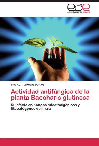 Actividad Antifungica de La Planta Baccharis Glutinosa por Ema Carina Rosas Burgos