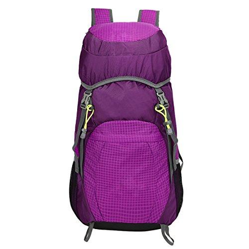 LAIDAYE Sportiva Zaino Da Viaggio Di Utilità Affari Il Tempo Libero Multi-purpose Zaino Da Viaggio Purple