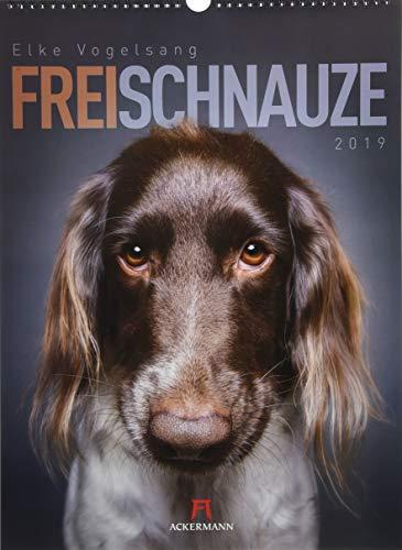 Frei Schnauze 2019, Wandkalender im Hochformat (33x45 cm) - Tierkalender / Hundekalender mit Monatskalendarium
