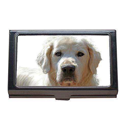 Visitenkartenhalter, Golden Retriever isoliert Hund Haustier Tier Portrait, Visitenkarte Edelstahl -