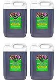 Envii SeaFeed Xtra - Fertilizzante liquido organico per alghe - 20L