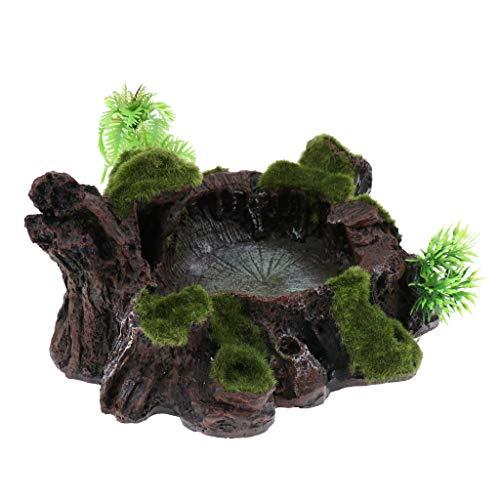 perfk Futternapf Wasserschale Felsen Dekor für Terrarium Reptil Tank