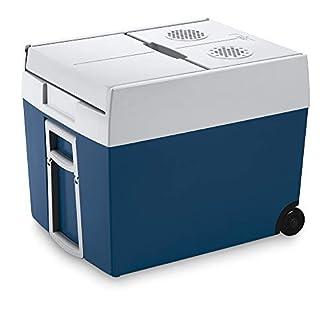 Kühlbox 12V 230V Bild