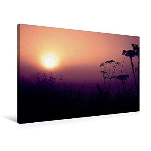 Calvendo Premium Textil-Leinwand 90 cm x 60 cm Quer, Ein Motiv aus Dem Kalender Sonnenaufgang im Teufelsmoor   Wandbild, Bild auf Keilrahmen, Fertigbild auf Romantisches Teufelsmoor Natur Natur