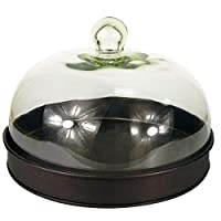 Gr8 Home Round Black Cake Stand Food Serving Tray Display Platter Dish Plate Holder with Glass Dome Cover Cloche Lid