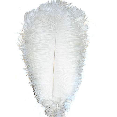 Kolight 50 Stück gefärbte natürliche Straußenfedern für Heimwerker, Hochzeit, Party, Büro Dekoration 14''~16''(35~40cm) weiß