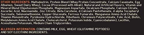 Optimum Nutrition Serious Mass Gainer Schokoladen, 5,45 Kg - 2