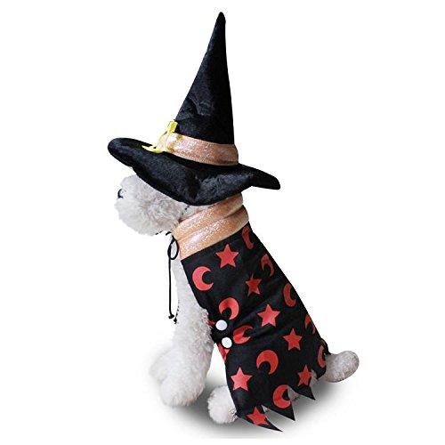 Hundemantel Halloween Hut Umhang Set LNAG , (Pfund Hund Kostüme 100)
