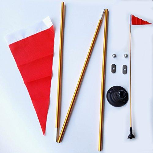 bandera con mastil