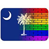 Carpet Rug Door Mat Well Worn Wall Painted LGBT Rainbow South Carolina State Flag Rainbow Brick