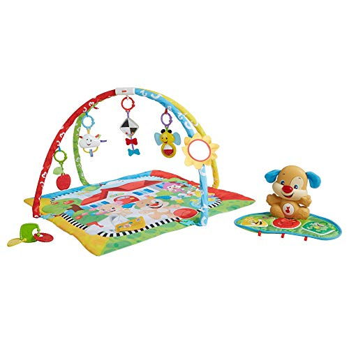 Fisher-Price Laugh and Learn Puppy 'n Pals Learning Gym