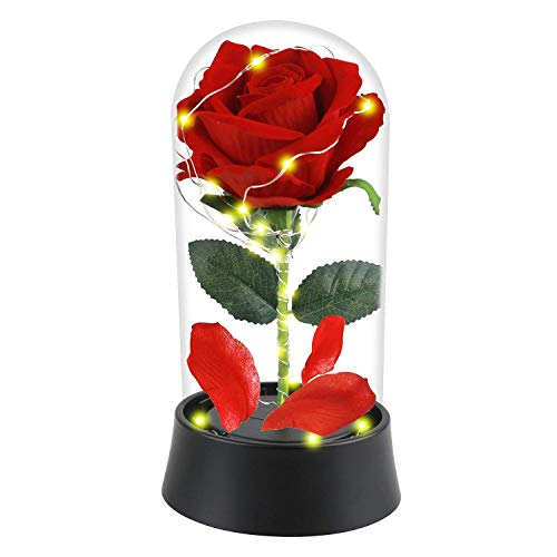 JUN_NUO Beauty and The Beast Rose, luz LED encantada con pétalos caí