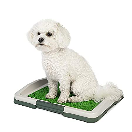 Hundeklo Hunde Toilette – Hundetoilette für kleine Hunde – Welpen Toilette – Ideal zur Hundeerziehung – Hunde WC für…