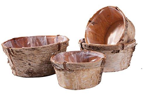ᐅ Blumenkübel Holz - wählen Sie aus den Bestsellern aus ...