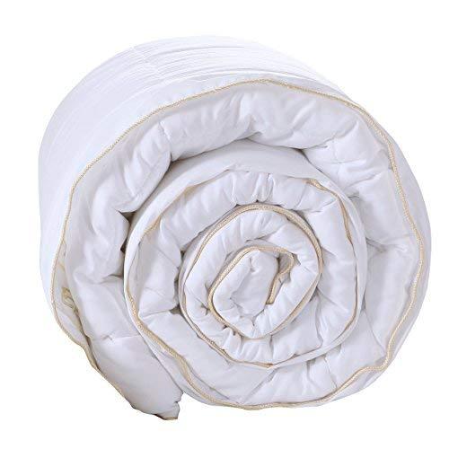 Exclusivo Mezcla Weiß Daunen Alternative Gesteppt Tröster Bettdecke Einsatz mit Ecke Tabs/Schlaufen für Alle Jahreszeiten-Weich, hypollergenic und Leicht Twin(64