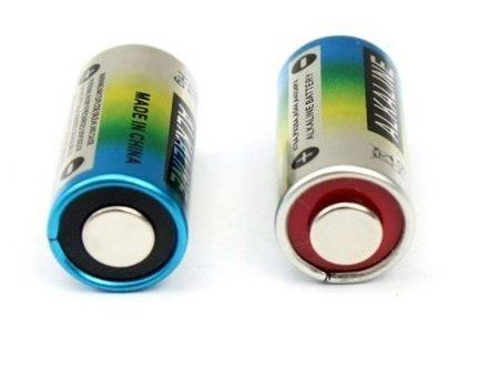 4LR44-Batterie für Zaunhalsband, 2 Stück