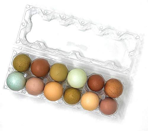 24 Stück Premium Klarer Kunststoff Wiederverwendbare Dutzend Eier Karton mit Etiketten für 12 extra große Eier (Große Eggs Kunststoff Easter)