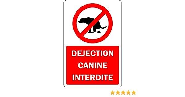 D/éjection Canine Interdite Panneau Plaque Aluminium 3mm 300mm x 200mm