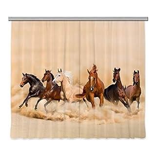 AG Design Kinderzimmer Gardine/Vorhang, Stoff, Mehrfarbig, 0.1 x 280 x 245 cm