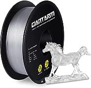 Filament GIANTARM PETG 1,75 mm pour imprimante 3D 1 kg