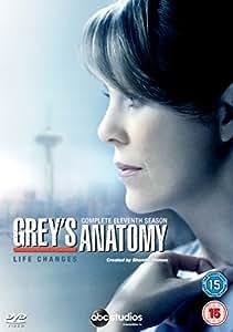 Grey's Anatomy - Season 11 [DVD]