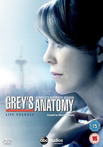 Grey's Anatomy - Series 11