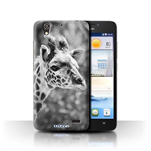 Stuff4® Hülle/Hülle für Huawei Ascend G630 / Giraffe Muster/Zoo-Tiere Kollektion