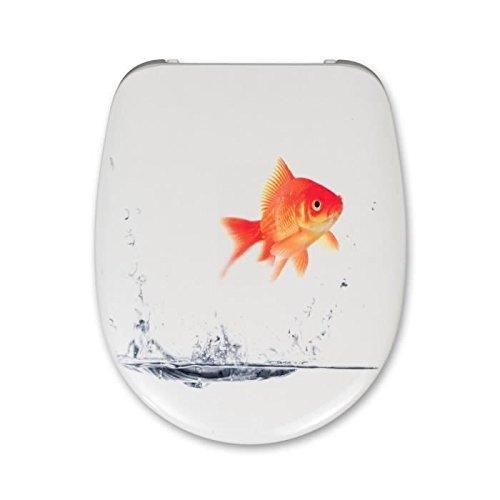 cedo-cedo-tapa-malibu-beach-goldfish-46-x-383-x-49-cm